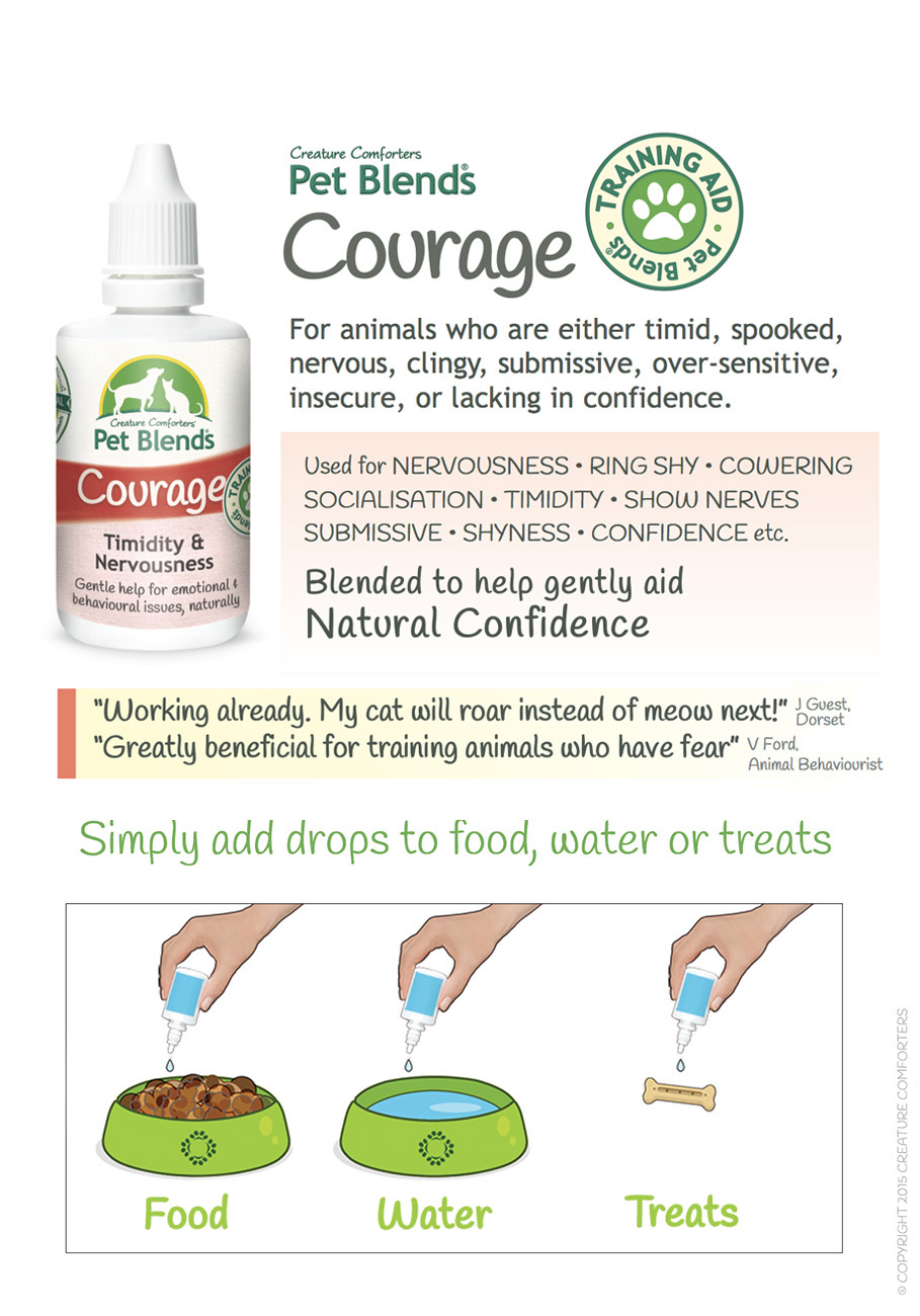 COURAGE BLEND INSTRUCTIONS