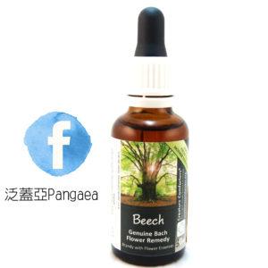 厚生花精-山毛櫸(大) Beech 30ML