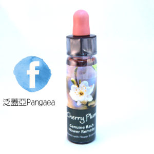 厚生櫻桃李Cherry plum 10ml