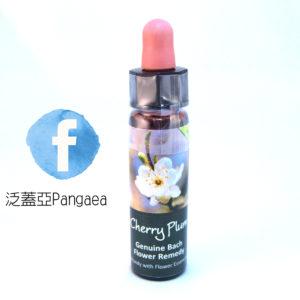 厚生櫻桃李Cherry plum 10ml