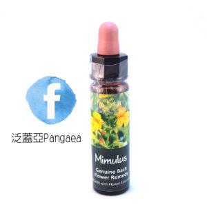 厚生花精-溝酸漿Mimulus 10ML