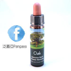 厚生花精-橡樹Oak 10ML