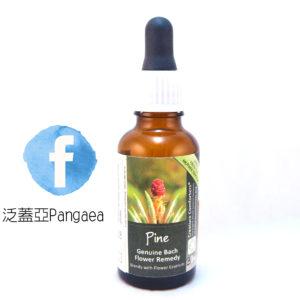 厚生花精-松樹(大) Pine 30ML