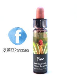 厚生花精-松樹 Pine 10ML