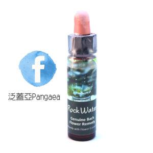 厚生花精-岩水Rock water 10ML