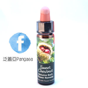 厚生花精-甜栗 Sweet Chestnut 10ml
