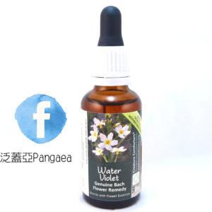 厚生花精-水堇(大) Water Violet 30ML