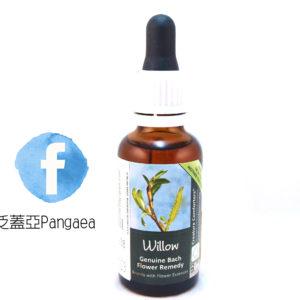 厚生花精-楊柳(大) Willow 30ML