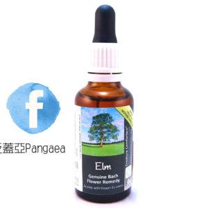 厚生花精-榆樹(大) Elm 30ML