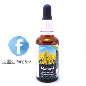 厚生花精-芥茉(大) Mustard 30ML