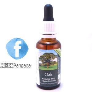 厚生花精-橡樹(大) Oak 30ML