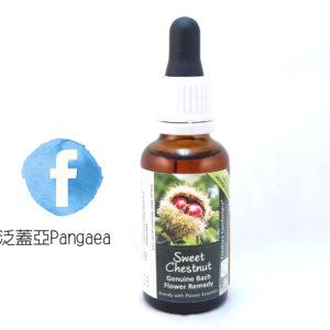 厚生花精-甜栗(大) Sweet Chestnut 30ML